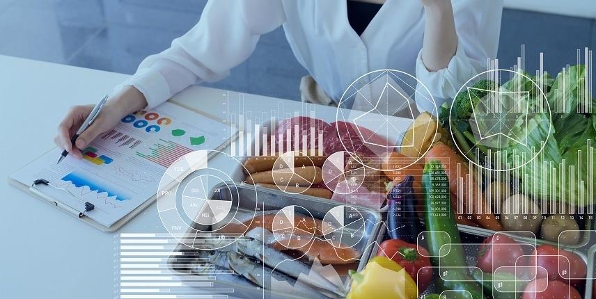 diätplan und ernährungsplan erstellen lassen