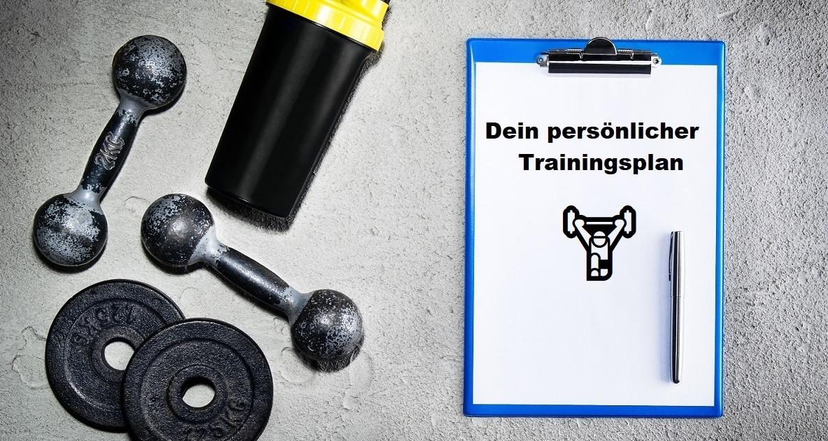 ganzkörper trainingsplan