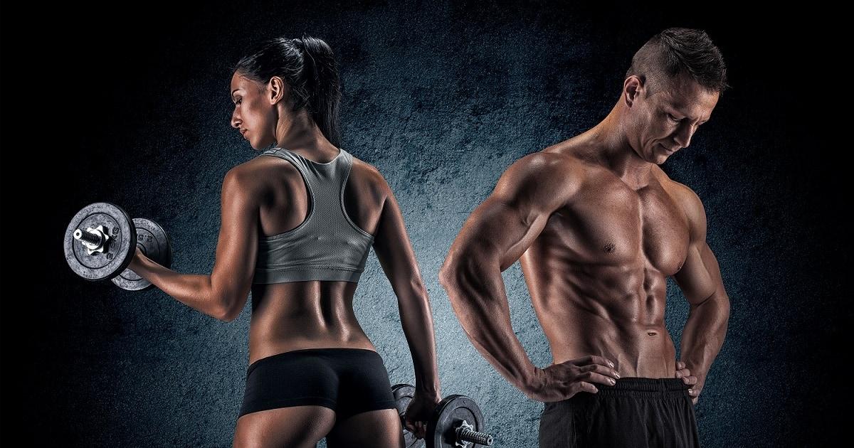ganzkörper trainingsplan mann frau