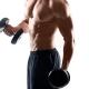 trainingsplan für den muskelaufbau erstellen lassen
