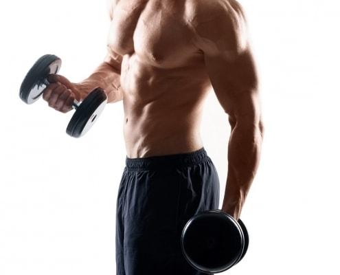 ernährungsplan muskelaufbau erstellen