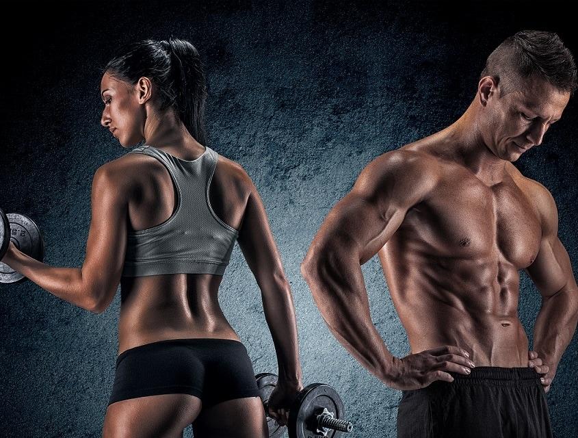 bodybuilding ernährungsplan erstellen
