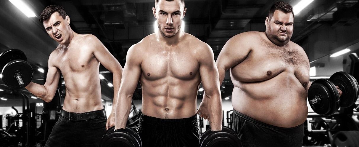 fitness und Ernährungscoaching. trainingsplan und ernährungsplan vom profi erstellen lassen.
